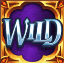 Wild Symbol slot game